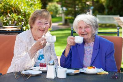 two senior having a tea time